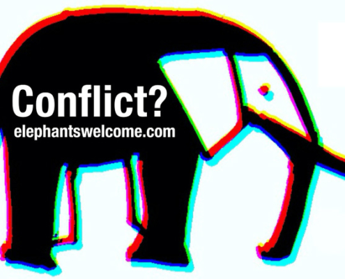 elephant in the room conflict mediation frankfurt