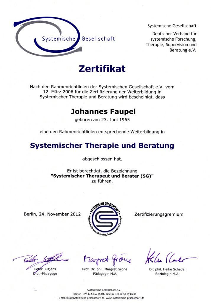 Systemische Gesellschaft Zertifikat
